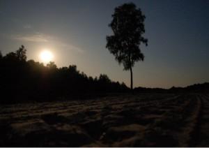 Sonnenuntergang im Vehnemoor